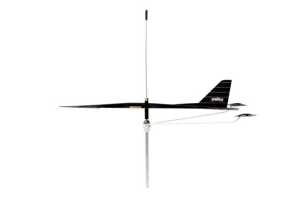 Windex BirdSpike for Windex